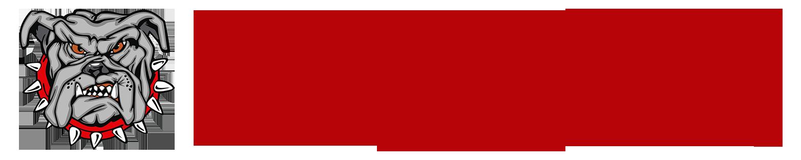 DDHQ_top-logo